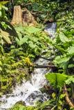 Eden Project, Bodelva, Cornwall, England. Royalty Free Stock Photos