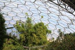 Eden Project Royalty Free Stock Photos