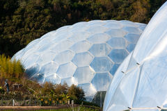 Eden Project Cornwall. Biomes at the Eden Project near St Austell Cornwall England UK Stock Photo