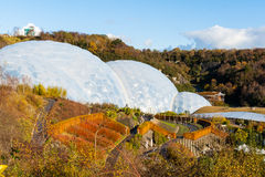 Eden Project Cornwall. Biomes at the Eden Project near St Austell Cornwall England UK Royalty Free Stock Photo
