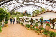 Eden Project Cornwall. The Eden Project in Cornwall Mediterranean biome a popular visitor attraction built in a former quarry with tropical gardens housed in royalty free stock photo