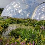 Eden project. Domes Royalty Free Stock Photos