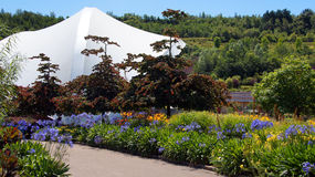 Eden Project garden in St. Austell Cornwall Royalty Free Stock Photos
