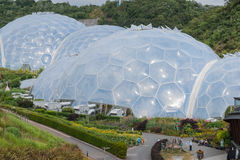 Eden Project. Royalty Free Stock Image