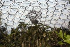 Eden project - Rainforest Lookout platform Royalty Free Stock Photography