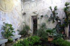 eden trädgård royaltyfri fotografi