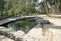 Eden Water Park royalty-vrije stock afbeelding