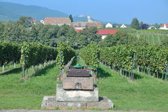Edenkoben,german Wine Route,Palatinate Royalty Free Stock Images