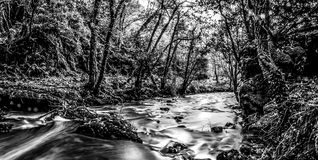 Edenvale Waterfall Black and White. Waterfall and river at Edenvale, County Wexford, Ireland Stock Image