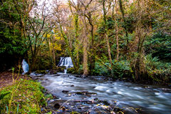 Edenvale Waterfall. Waterfall and river at Edenvale, County Wexford, Ireland Royalty Free Stock Photo