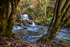 Edenvale Waterfall. Waterfall and river at Edenvale, County Wexford, Ireland Royalty Free Stock Photography