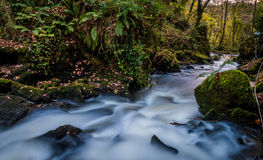 Edenvale Waterfall. Waterfall and river at Edenvale, County Wexford, Ireland Royalty Free Stock Photos