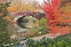 Edera rossa sul ponticello del Central Park Fotografie Stock Libere da Diritti