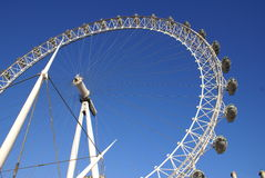 EDF Energy London Eye Royalty Free Stock Images
