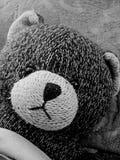 Edgar Teddy Bear Foto de archivo libre de regalías