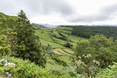 Edge of Caldeira Do Alferes. Pasture land leading up to Caldeira Do Alferes on the island of Sao Miguel in the Azores royalty free stock images