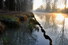 At the edge of canal an autumn morning. Path at the edge of canal in the morning Royalty Free Stock Photos