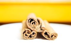 Edge of cinnamon spice on colorful background Royalty Free Stock Photos