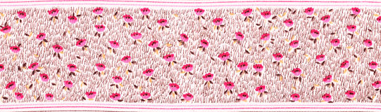Edge fabric tiny florets . Royalty Free Stock Photo