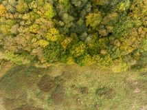 Edge of forest aerial view autumn stock photo