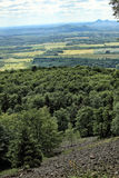 Edge of the forest from the top of steep hill Stock Image