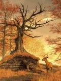Autumn Stag. At the edge of a grassy forest clearing, a twisted, dead oak rests upon a small hill. In the golden light of a cloudy autumn afternoon, a buck has vector illustration