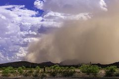 Edge Of Arizona Haboob Sandstorm Royalty Free Stock Image