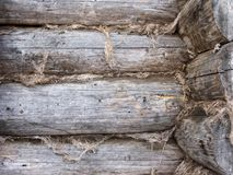 Edge of old log wall Royalty Free Stock Photo