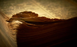Edge of open old religious book. Stock Images