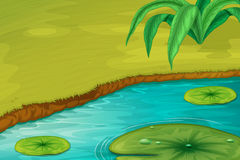 Edge of a pond. Illustration of the edge of a pond royalty free illustration
