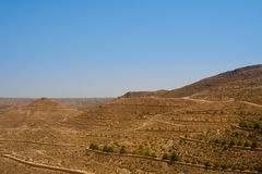 At the edge of the Sahara desert. Beautiful contrasting views. Royalty Free Stock Photography