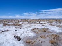 On the edge of the Salinas Grandes salt desert in Northern Argenina royalty free stock photography