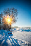 Edge of small river in winter Stock Photos