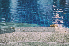 Edge of swimming pool in hotel resort Stock Photos