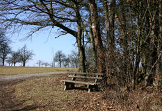At the edge of the woods. Wooden bench at the edge of the wood; in the German countryside royalty free stock photos