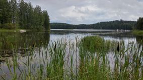 Edges of lake. Saimaa lake Finland Stock Photography