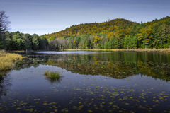 Edgewood-Landungs-Erhaltungs-Teich, Bolton, NY Stockfotos