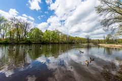 Edgewood State Park in New Haven Connecticut.  royalty free stock images