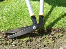 Edging shears. Closeup of long edging shears trimming grass Stock Photos