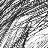 Edgy texture with chaotic, random lines. Abstract geometric illu Stock Images