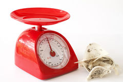 Edible bird's nest and kitchen scales. Edible bird's nest and red kitchen scales Stock Photography