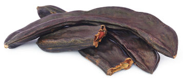 Edible carob fruits Stock Images