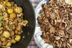 Edible chestnut Stock Images