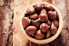 Edible chestnuts Stock Images