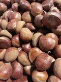Edible chestnuts Stock Photo