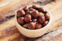 Edible chestnuts Stock Image