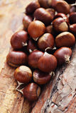 Edible chestnuts Stock Photo