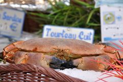 Edible crab on a market. Edible crab sold on a streetmarket in Paris stock images