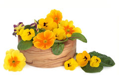 Edible Flower Salad Stock Photo