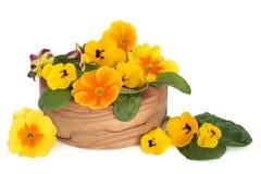 Edible Flower Salad Stock Photo